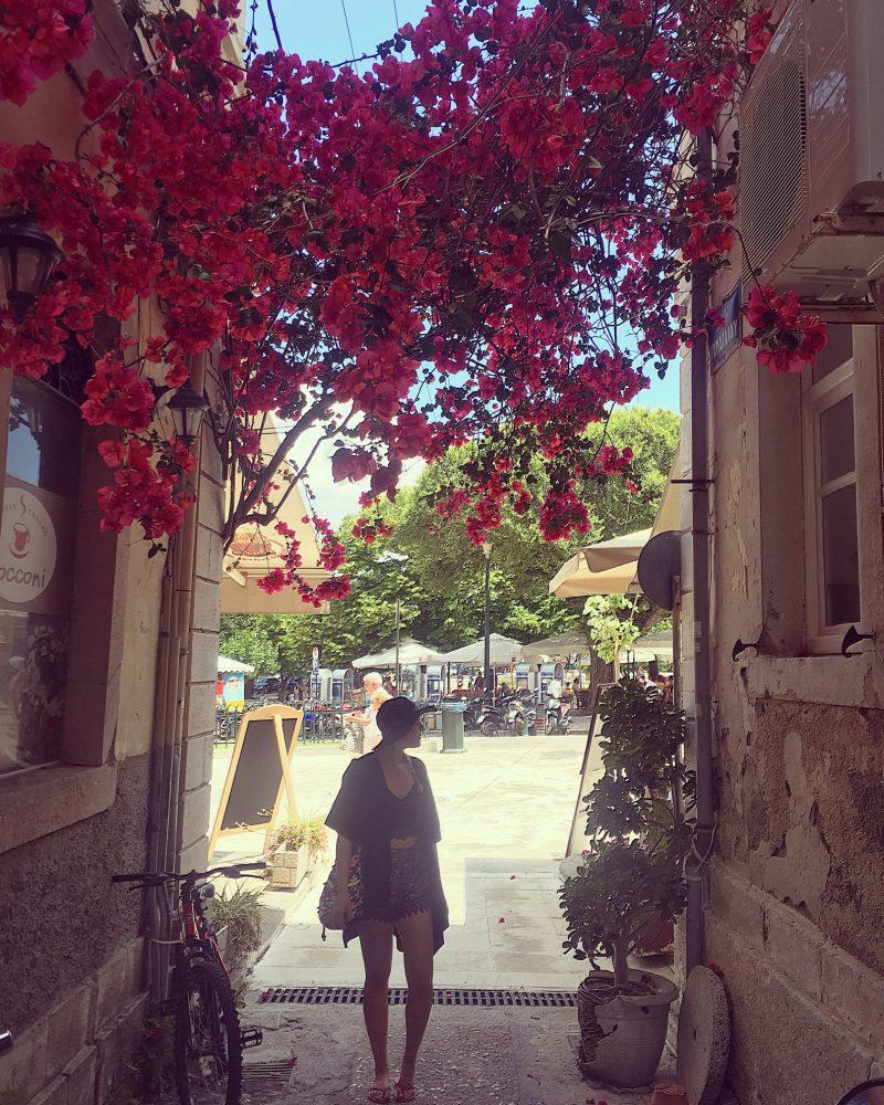 Corfu town flowers